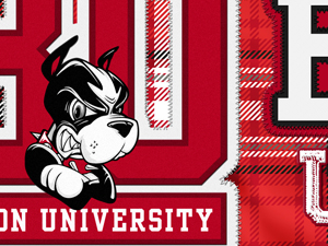 Boston University Plaid Mug