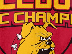 Ferris State Championship Tees